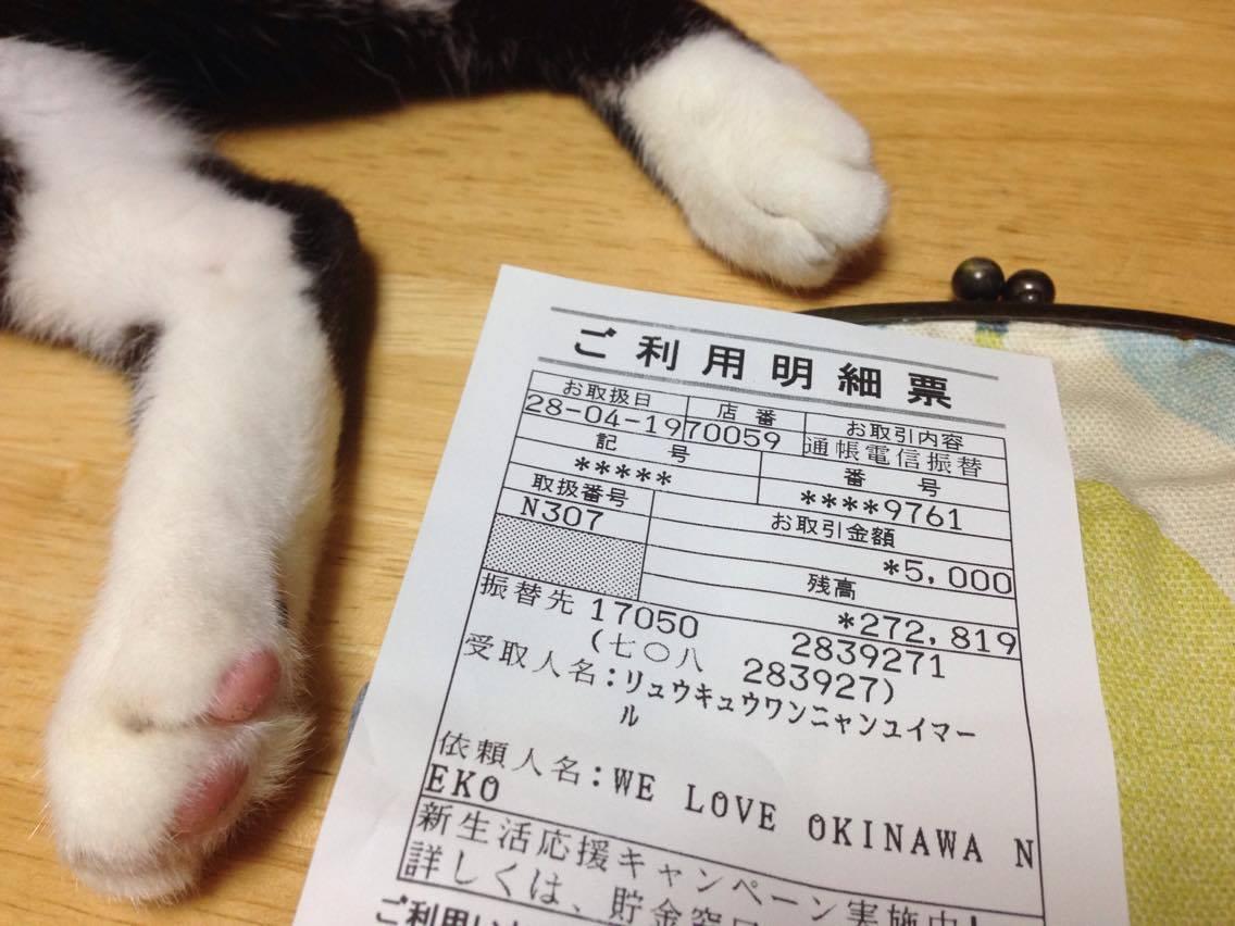 沖縄ネコチャリティーを、お届けしました
